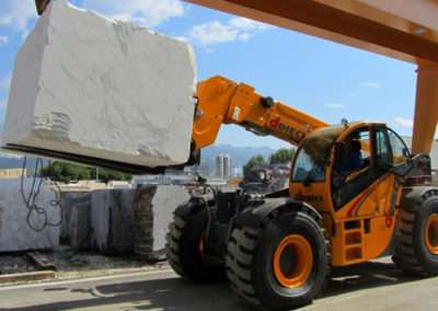 telehandler-with-forklift-attachment